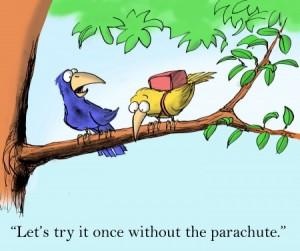 Angst vogels parachute